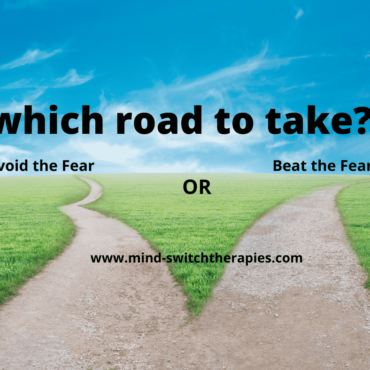 Which Road to Take?